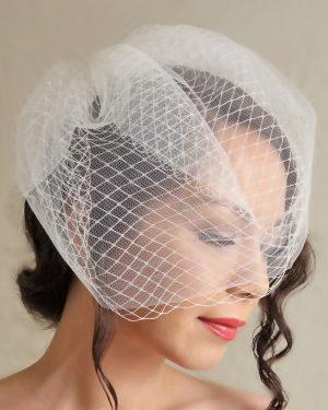 Tulle & Net Birdcage Veil